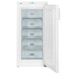 Congélateur armoire (162L) en acier - 600 x 632 x 1250 mm