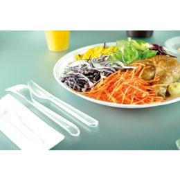 Assiette plastique blanche diamètre 220 mm