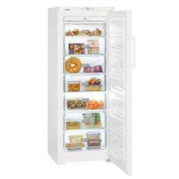 Congélateur armoire no frost (265L) - 600 x 630 x 1644 mm